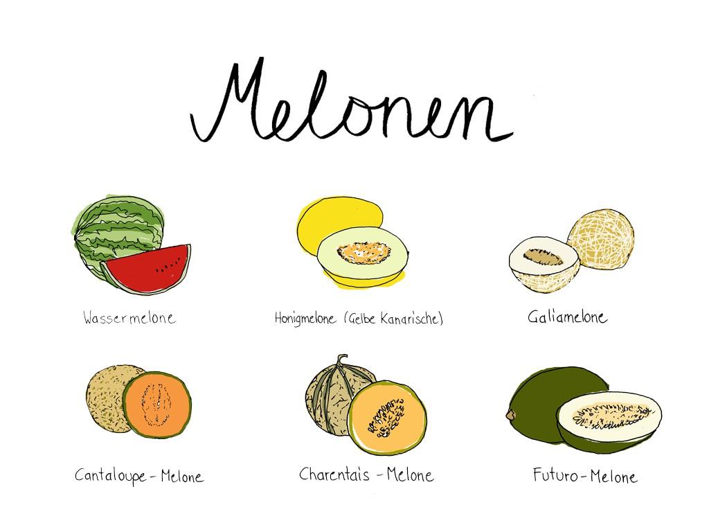 uebersicht_melonen